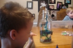 J's favorite part: watching the food coloring disperse in the water.